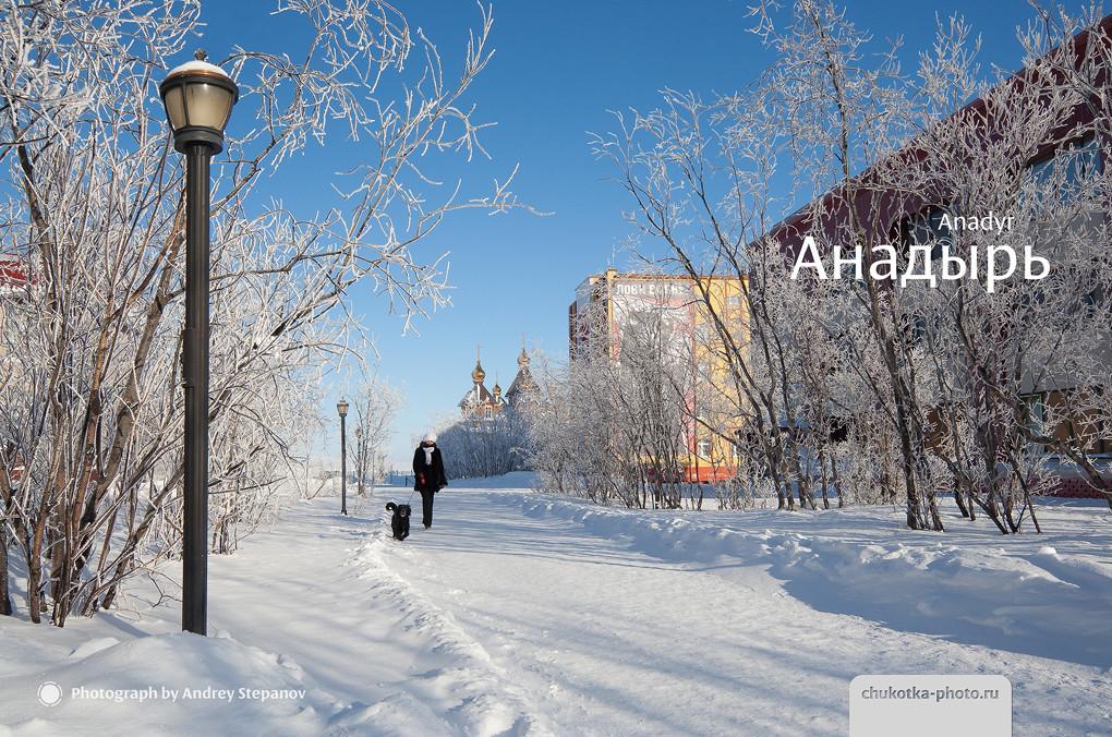 Анадырь (аллея на улице Дежнёва)